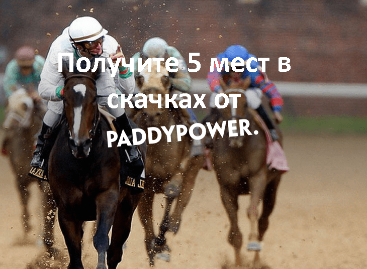 Получите 5 мест в скачках от Paddy Power